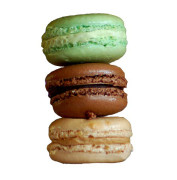 assorted_french_macaroons